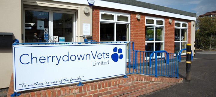 Cherrydown Vets in Basildon, Stanford Le Hope, Wickford in Essex