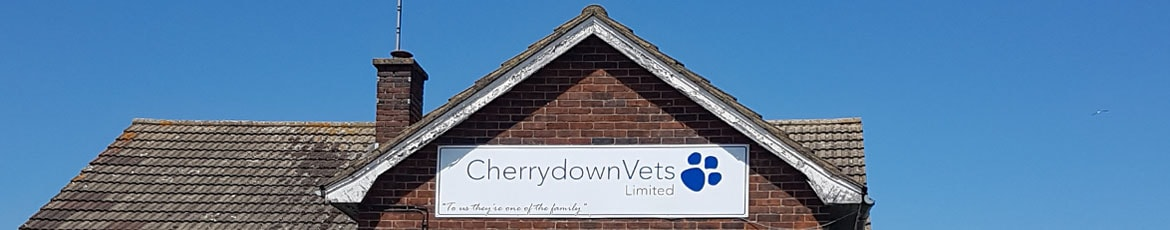 CherryDown vets website sitemap