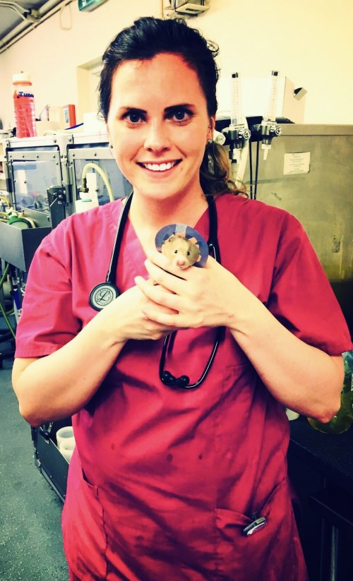 Vet surgeon Amy Andrews with Lavender after her operation
