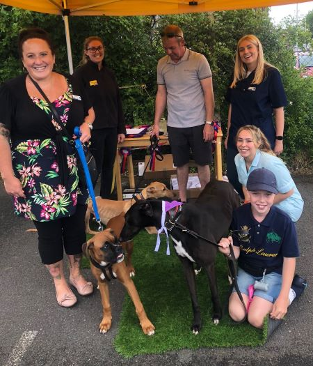 basildon vets open day
